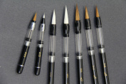 7 Piston Filler Waterbrush & Water Brush Fountain Pens Value Pack