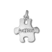 Autism Awareness Puzzle Sterling Silver Charm