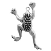 Gift Boxed Sterling Silver Climbing Frog Charm Garden Jewellery
