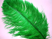1 Pc Ostrich Feather Plume 46cm - 60cm (Top Quality) - KELLY GREEN