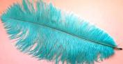 1 Pc Ostrich Feather Plume 46cm - 60cm (Top Quality) - AQUA BLUE