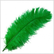 1 Pc Large Ostrich Feather Plume 60cm - 70cm (Top Quality) - KELLY GREEN