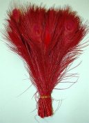 25 Pcs Peacock Feathers 25cm - 30cm Bleached RED