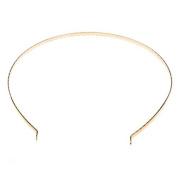 Beadaholique Plated Metal Tiara Headband Frame with Fun Craft Beading Project, 14cm , 22K Gold