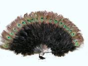 Marabou Feather Fan w/ Peacock - BLACK 60cm x 36cm