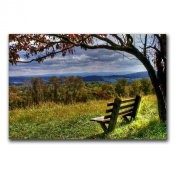 Trademark Fine Art Walk Alone by CATeyes Canvas Wall Art