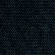 Duck/Canvas 210ml 2.5cm Wide 100% Cotton 20 Yard Bolt-Black