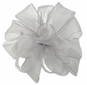 Offray Wired Edge Encore Sheer Craft Ribbon, 1.6cm Wide by 25-Yard Spool, Silver