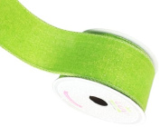 LUV RIBBONS Fabric Ribbon by Creative Ideas, 5.1cm , Canvas Glam, Apple Green
