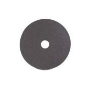 Logan Hardware F200-2 Sanding Disc