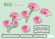 Ecstasy Crafts Craft Uk B & B Pink Carnations