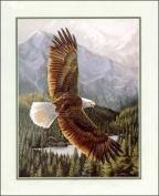 Soaring Eagle II Paper Tole 3D Kit 8x10