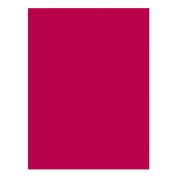 Riverside - Construction Paper, 76 lb., 23cm x 30cm , 50/PK, Red, Sold as 1 Package, PAC 103590