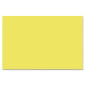 Nature Saver - Construction Paper, 30cm x 46cm , 50/PK, Yellow, Sold as 1 Package, NAT 22325