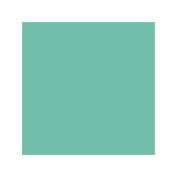 Chartpak AD Marker Individual - Dark Mint