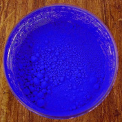 Ultramarine Blue Pure Pigment 30ml jar
