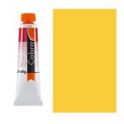 Cobra Study W/M Oil 40Ml Perm Yellow Lt