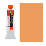 Cobra Study W/M Oil 40Ml Permanent Orange