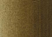 Winsor & Newton Artists' Oil Colour 120 ml Tube - Raw Umber