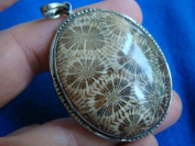 G0117 Coral Cabochon Petrified Mounted in Silver Charm