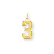 14k Medium Satin Number 3 Charm