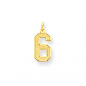 14k Medium Satin Number 6 Charm