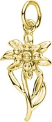 Rembrandt Charms Edelweiss Charm, 10K Yellow Gold