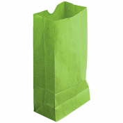coloured CRAFT BAGS LIME GREEN