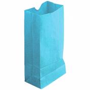 coloured CRAFT BAGS SKY BLUE