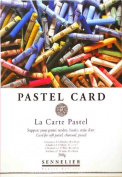 3 X Sennelier La Carte Pastel Pads 12x16 2 Sheets of 6 Colours each-Great deal!