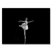 Trademark Art Ballerina IV by Martha Guerra Canvas Wall Art