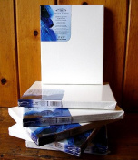 Winsor Newton 50cm x 50cm Prestretched Canvas- Pack of 6
