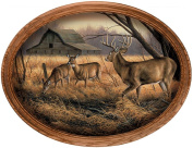 Abandoned Farmstead Whitetail Deer by Rosemary Millette Oval Canvas Framed Print Open Edition