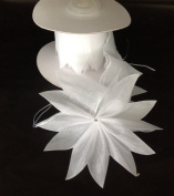 White Organza Pull Bow Ribbon for Jordan Almonds Candy Star 10 Yards