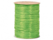 Berwick Wraphia Matte Rayon Craft Ribbon, 100-Yard Spool, Apple Green