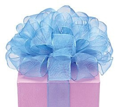 Blue Organza Sheer Ribbon #9 3.8cm X 20 Yds