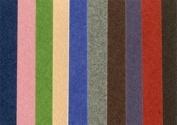Canson Mi-Teintes 48cm x 60cm Sheet, 10 Pack, Fine Art
