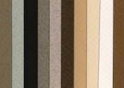 Canson Mi-Teintes 48cm x 60cm Pastel Sheet, 10 Pack, Muted