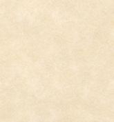 Natural Parchment Paper 50 Sheets 8.5 X 11