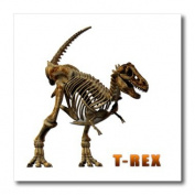 Boehm Graphics Dinosaur - T Rex Dinosaur - Iron on Heat Transfers