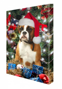 Boxer Dog Christmas Canvas 16 x 20