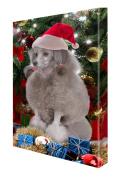 Poodle Dog Christmas Canvas 16 x 20