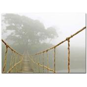 New Ikea Premiar Bridge Jungle Journey Picture with Frame/canvas Large 140cm X 200cm