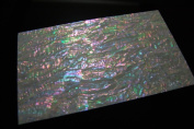 Prism Abalone Wide Shell Coated Veneer Sheet