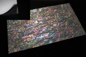 Prism Abalone Wide Shell Coated Enhanced Adhesive Veneer Sheet