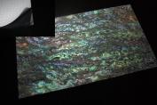 Dragon Paua Shell Coated Enhanced Adhesive Veneer Sheet