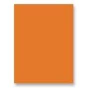 Pacon Fadeless(R) Art Paper Roll, 60cm . x 60ft., Orange