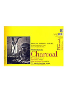 Strathmore 300 Series Charcoal Paper Pads 28cm . x 43cm . 32 sheets [PACK OF 2 ]