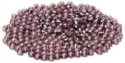 Beaders Paradise LTS284SL Czech Glass Amethyst Silver Lined 10/0 Seed Beads in a Tube