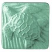 Turtle Soap Mould